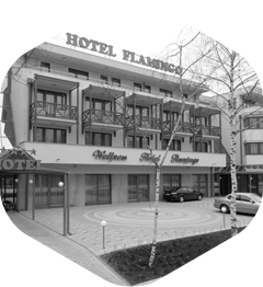 Hotel Flamingó